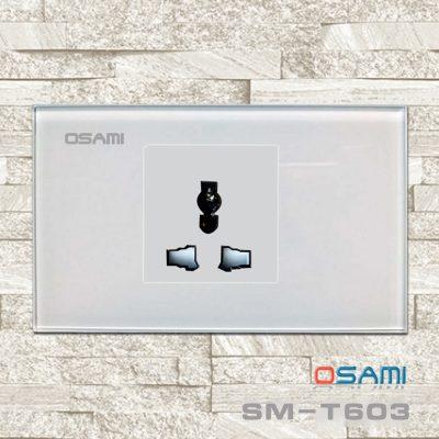 Cong Tac Cam Ung T603